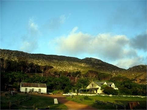 The Cape Farmhouse: We either go there for breakfast or on a Sat afternoon and watch some local musicians (rock/reggae/whatever) with a beer. Kids can play on jungle gyms, it's realy safe there. And we're surrounded by pure beauty! :)