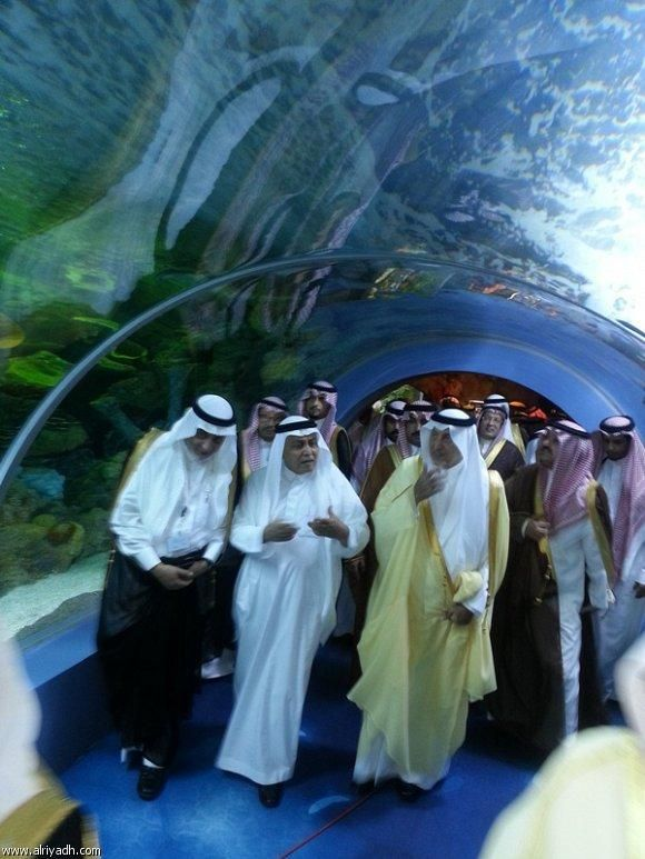 The Fakieh Aquarium Of Jeddah By Www Thesignaturehotels Com Jeddah The Beautiful Country Arabian People