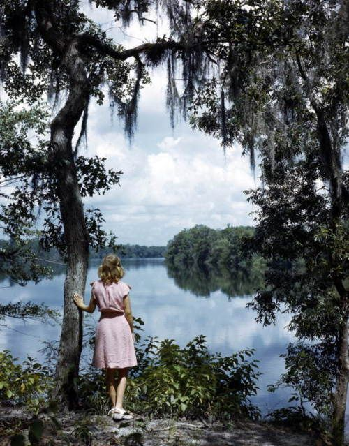 Photographer's daughter, Lois Duncan Steinmetz, admiring the scenery of the Suwannee River, 1949 - Joseph Janney Steinmetz