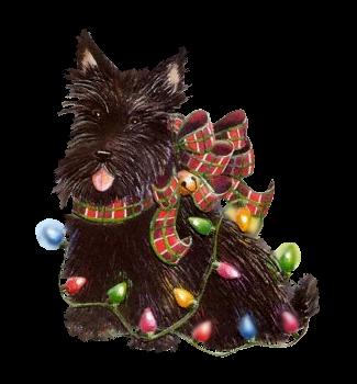 Border Terrier Chien Noël personnalisées Carte