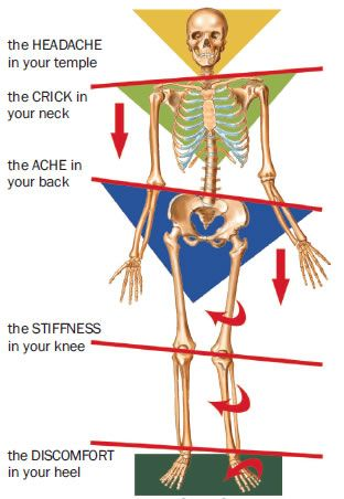 kinetic chain release   PT, Chiropractic, and Massage ...