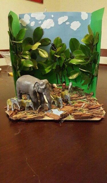 Elephant Diorama Elephant Doirama Pinterest School Projects