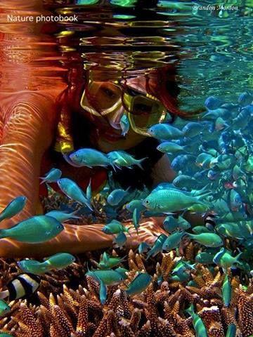 snorkeling #PrimerasVecesbyCyZone