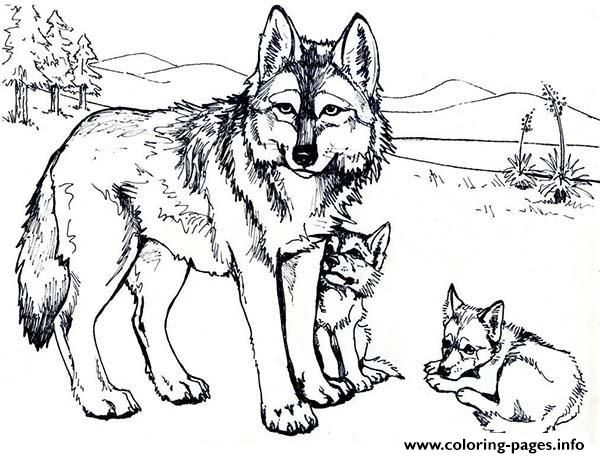 Baby Wolf Coloring Pages Sketch Coloring Page Cute Wolf Drawings Wolf Colors Wolf Sketch