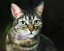 Resultado de imagem para pintura de gatos para tela