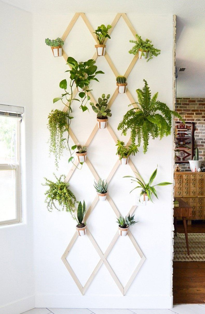 DIY Plant Wall Stand