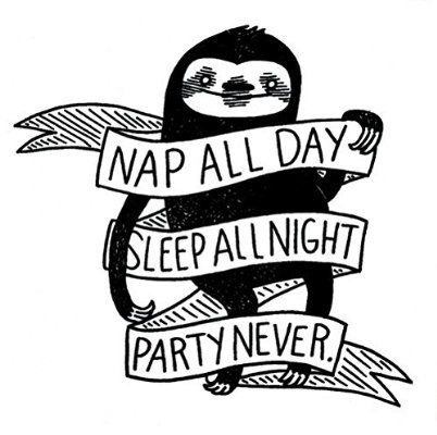 Nap all day sleep all night party never sloth phenomenauts sticker decal