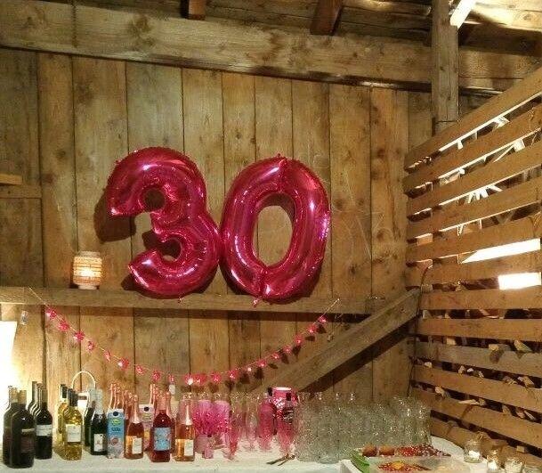 Geburtstag Party Pink Deko Girlande Sektgläser Ballon Stadel Balken Holz  Rustikal