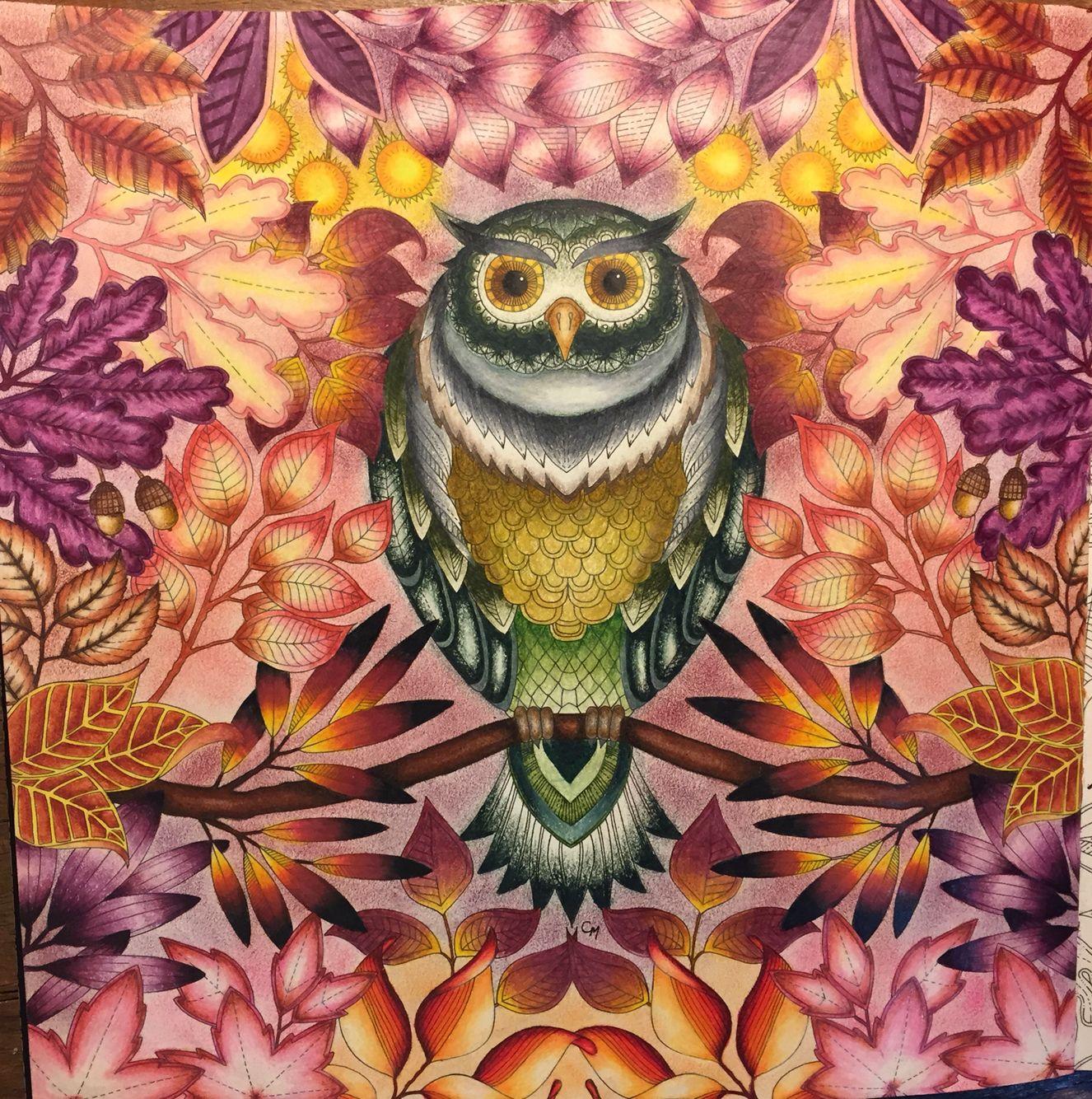 Owl Secret Garden. Coruja Jardim Secreto. Johanna Basford