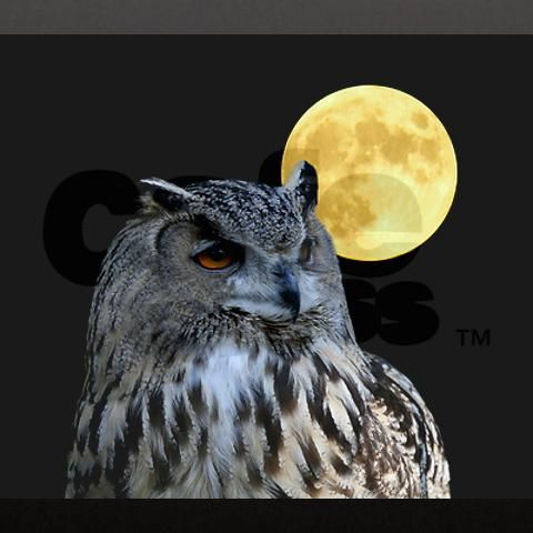 Great pic - here's to all my owl and moon loving friends!