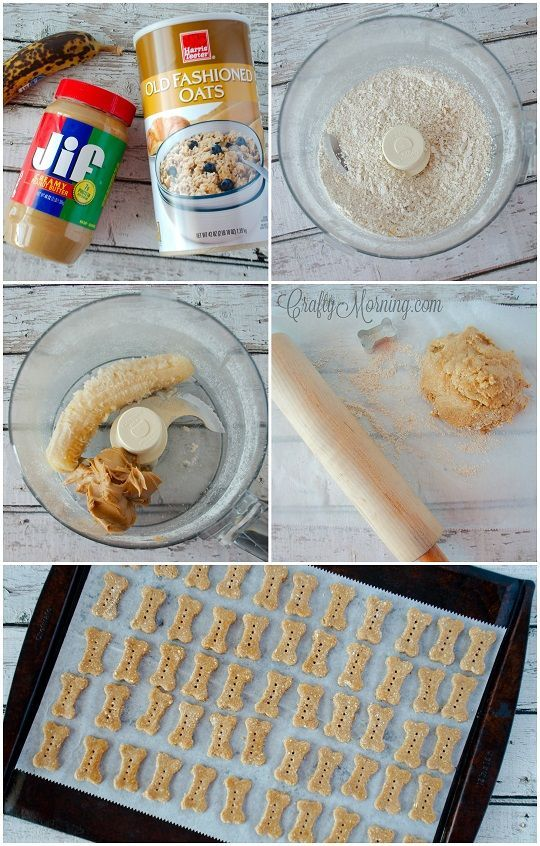 3 Ingredient Dog Treats Recipe 1 Dog Treats Pinterest Dog