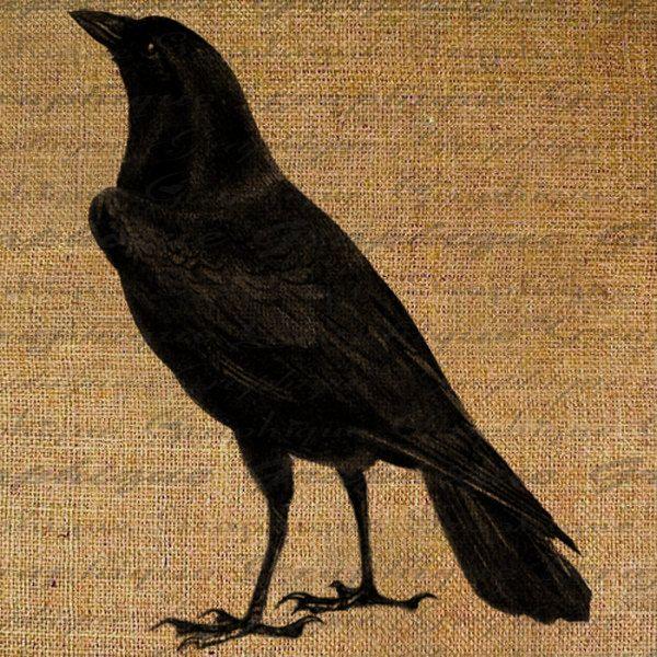 halloween digital collage sheet black birds crow raven burlap digital download fabric transfer iron on pillows - Halloween Crows