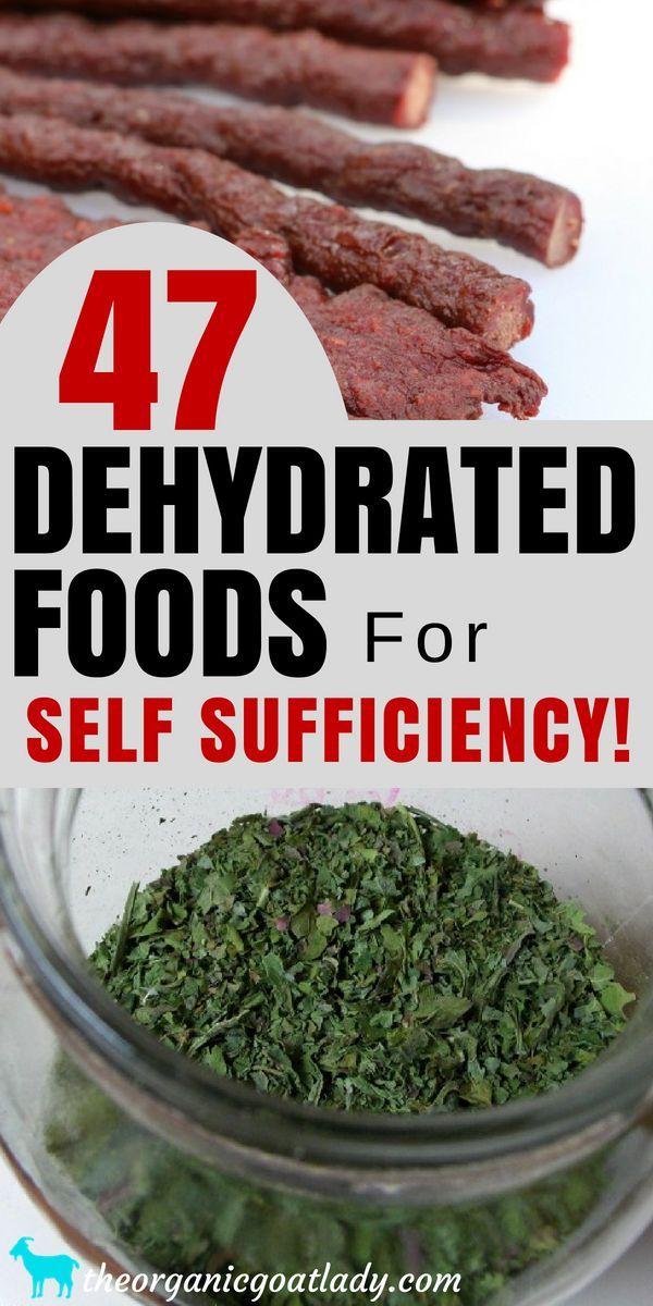 47 food dehydrator recipes pinterest dehydrator recipes food dehydrator and frugal