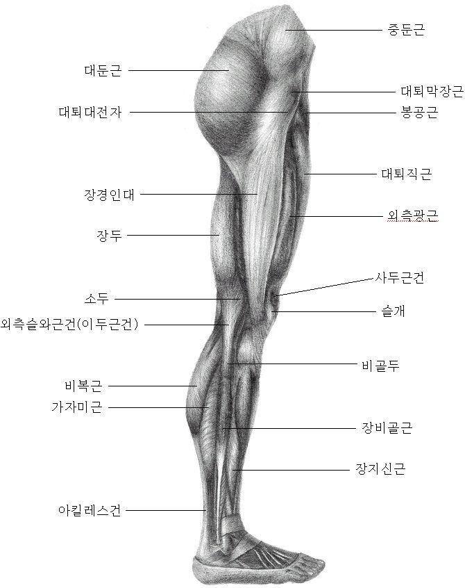 изделия части ноги человека фото с описанием рынке можно