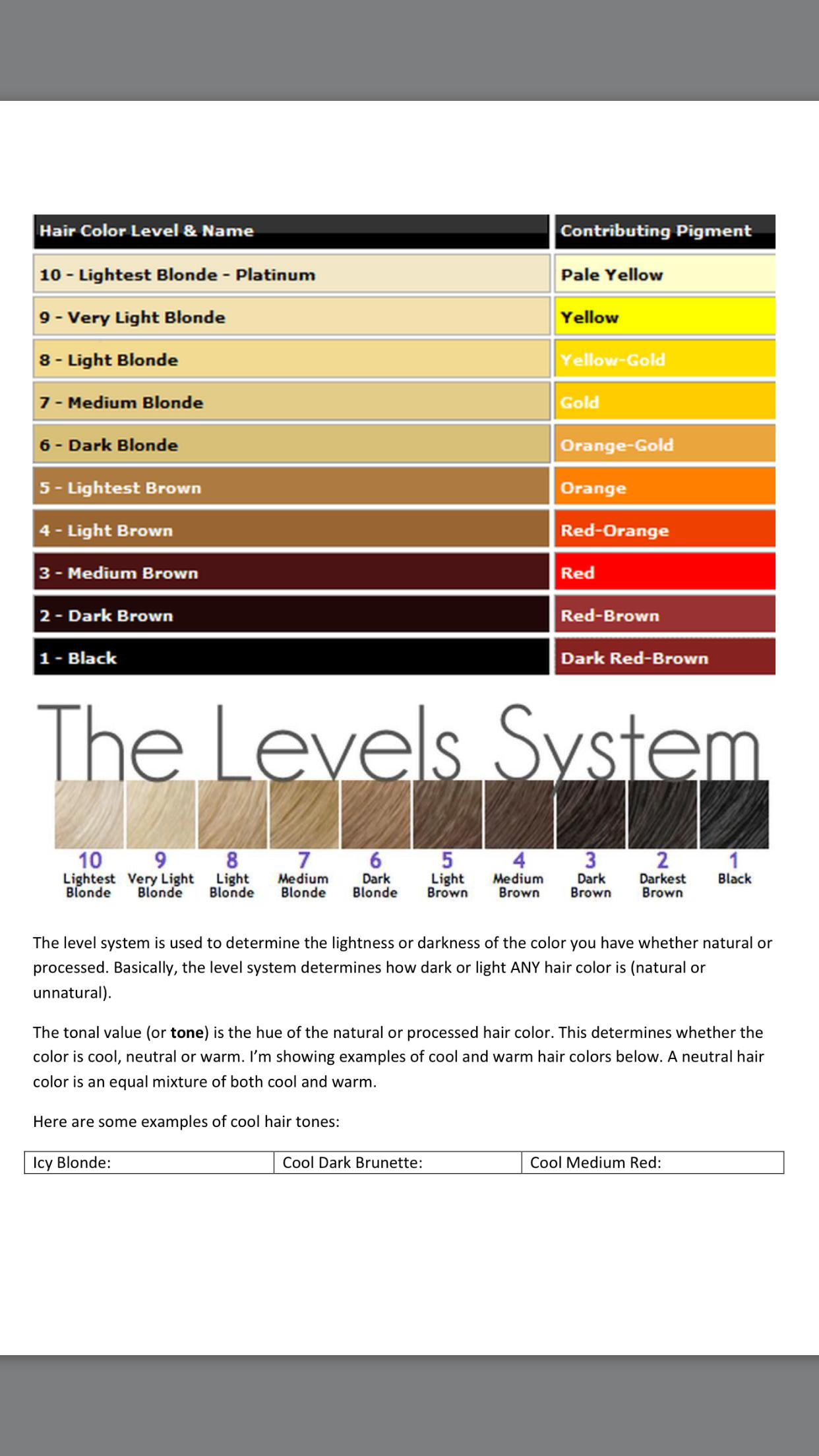 Hair Level System Hair Color Hair Inspiration Color Hair Levels