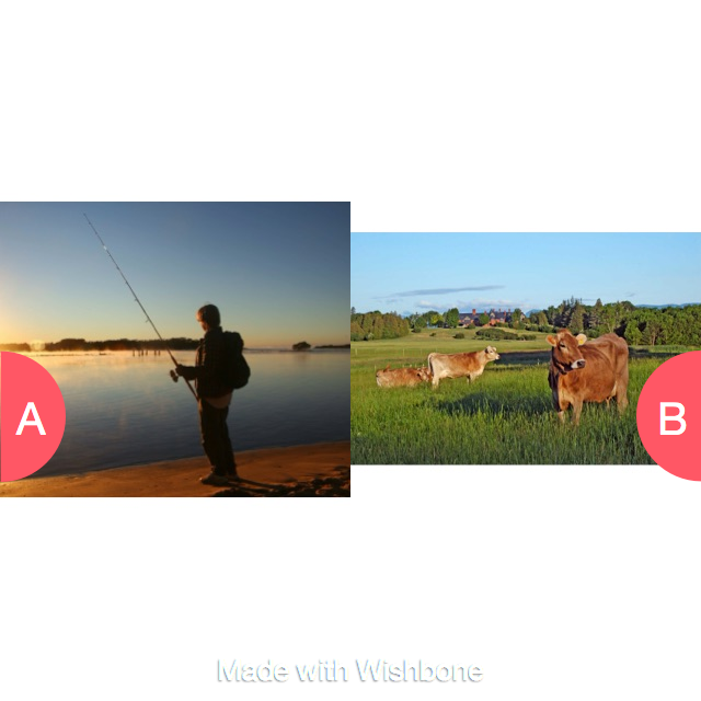 Which do you like better Click here to vote @ http://getwishboneapp.com/share/2538850