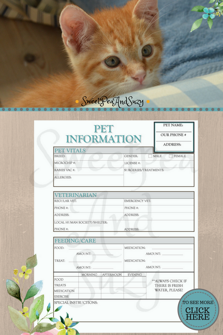 pet information form pet sitter dog walker house sitter pet