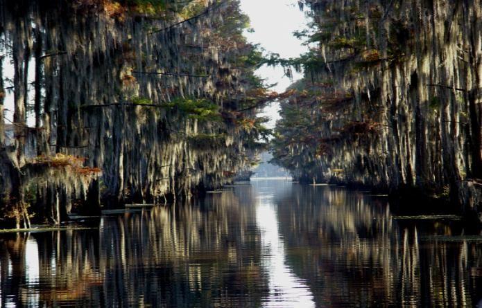 FOTOS: Top 10 paisajes naturales encantadores