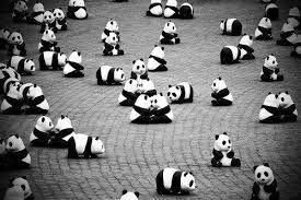 Pandas dominando o munda.. Ashuas