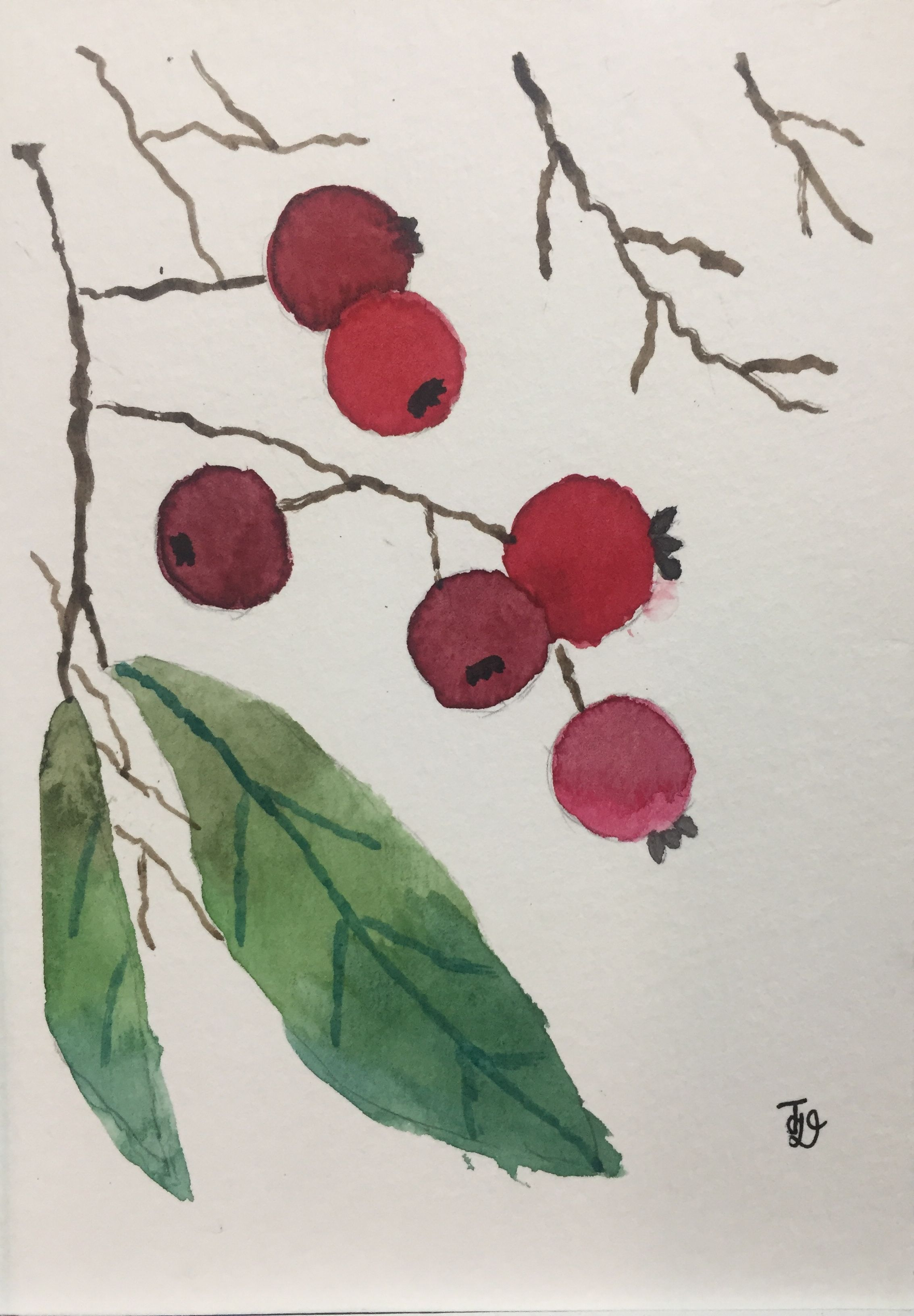 Name: Christmasberries Date: 22 December 2018 Size: 10.5 x 18 cm Painting media: Watercolour