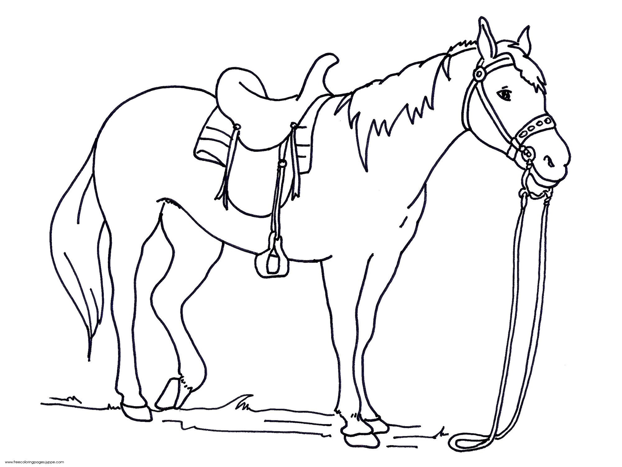 Free coloring horse pictures to print - Horse Coloring Pages Printable Free Coloring Pages