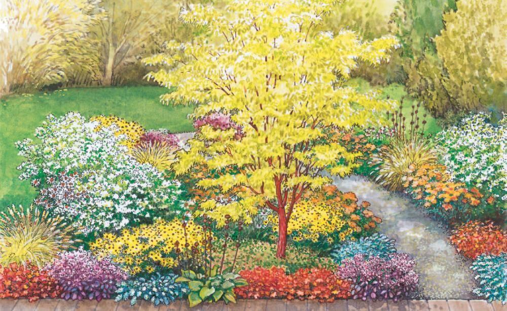 Farbenspiel im Herbstbeet Phönix, Rinde und Blätter