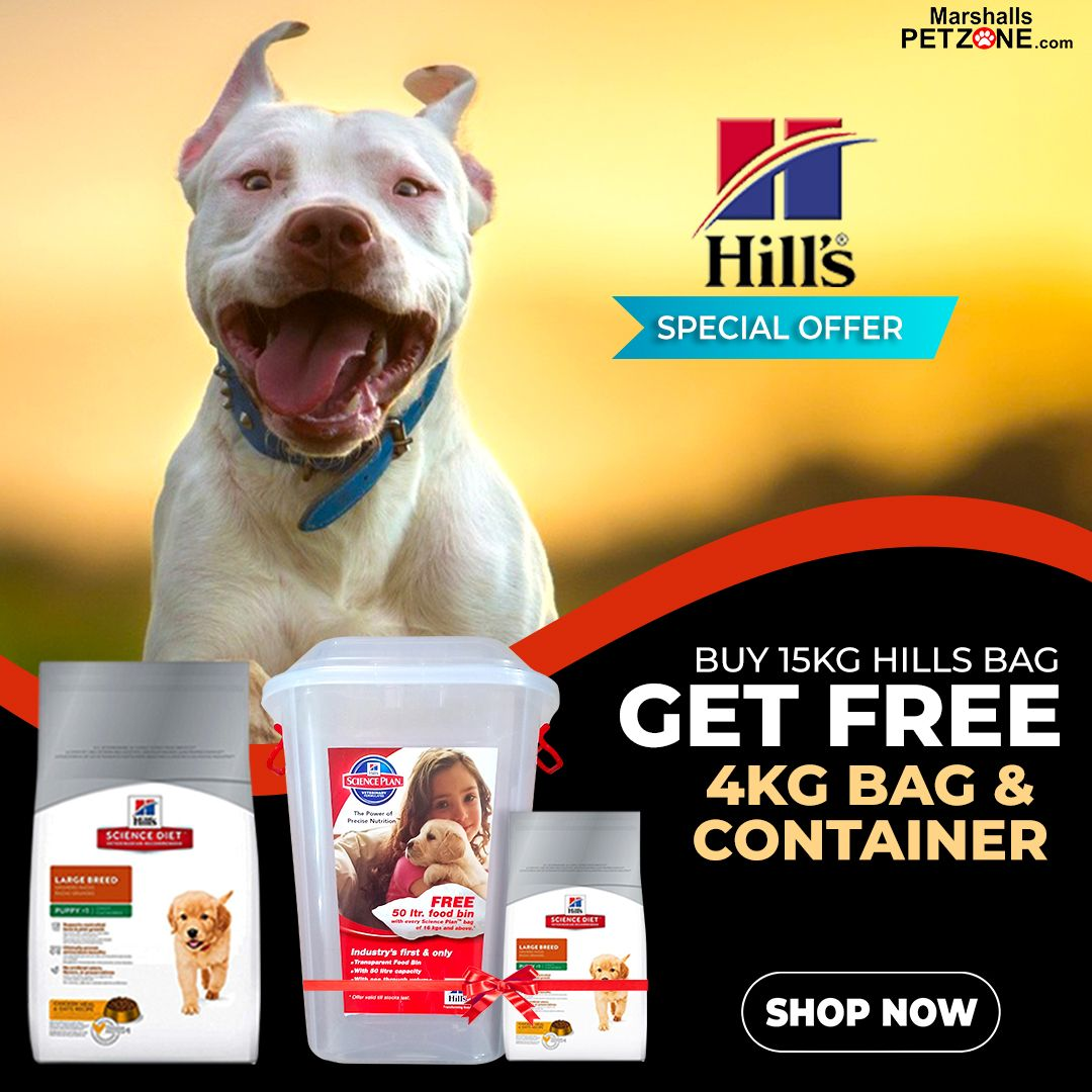 Hill S Puppy Food Large Breed Chicken 15 Kg At Lowest Price