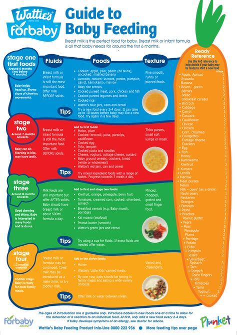 Guide to baby feeding fridge chart for baby nz stage 1 food