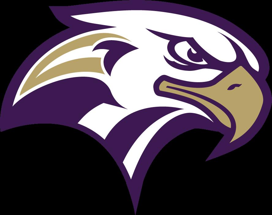 2017 Connell Eagle Eyepdf Png Animal Logo Sports Logo Design Bird Logos