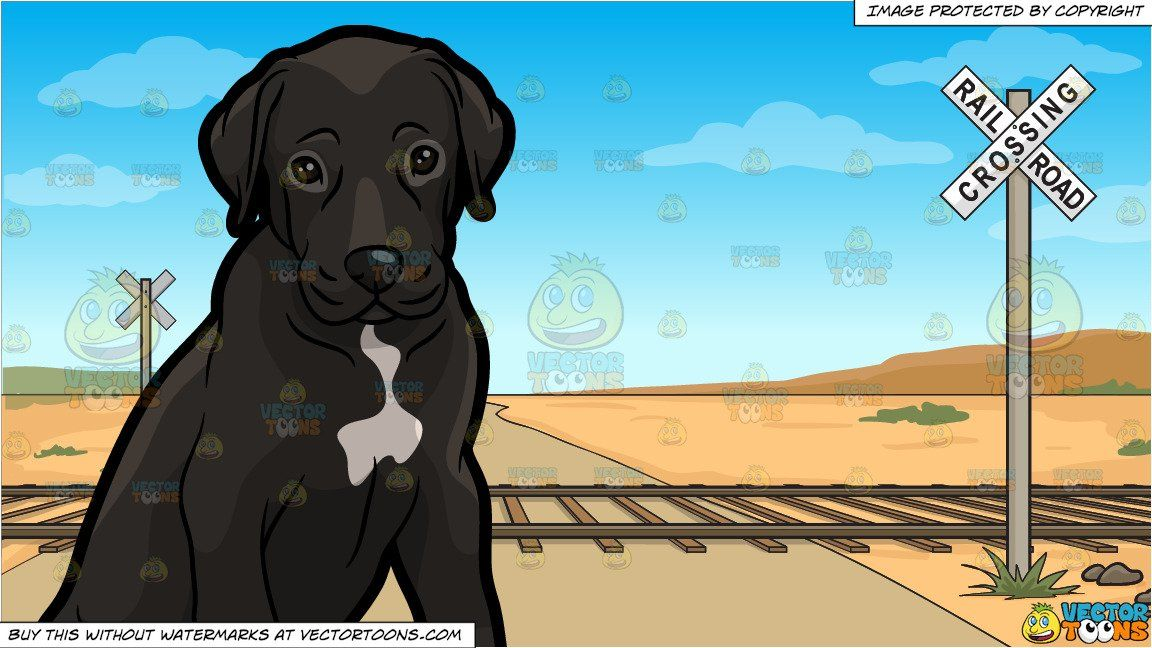 A Cute Great Dane Puppy And Railroad Crossing Background Great