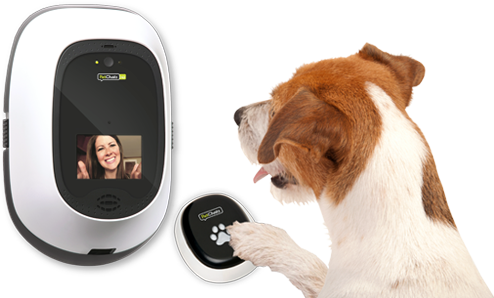 Pet Chatz Puppy Accessories Pets Dog Gifts
