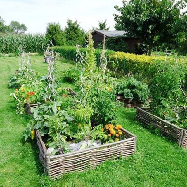 Creating Our First Vegetable Garden Advice Please: 42 Beautiful Garden Bed Edging Ideas With Pictures