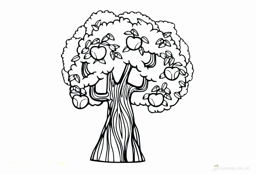 coloring page christmas lights luxury colouring pages tree
