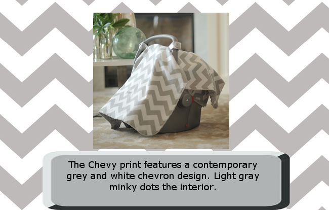 Chevy Car Seat Canopy