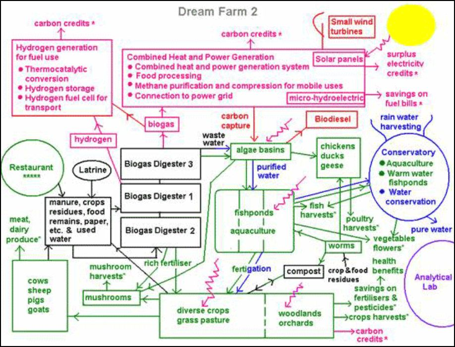 development patterns Archives Sustainable agriculture