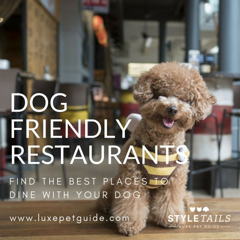 Find The Perfect Place For A Casual Breakfast Long Lunch Or A Delicious Dinner At Any Of These Dog Friendly Cafes And Restaurants H Dog Friends Pets Friendly