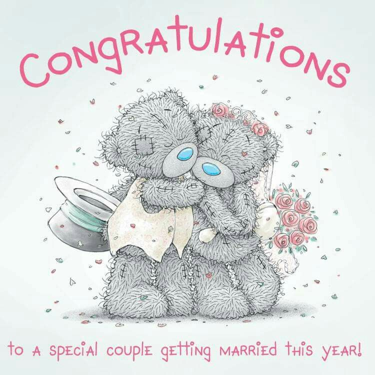 Congratulations Wedding Greetings Teddy Bear Quotes Tatty Teddy