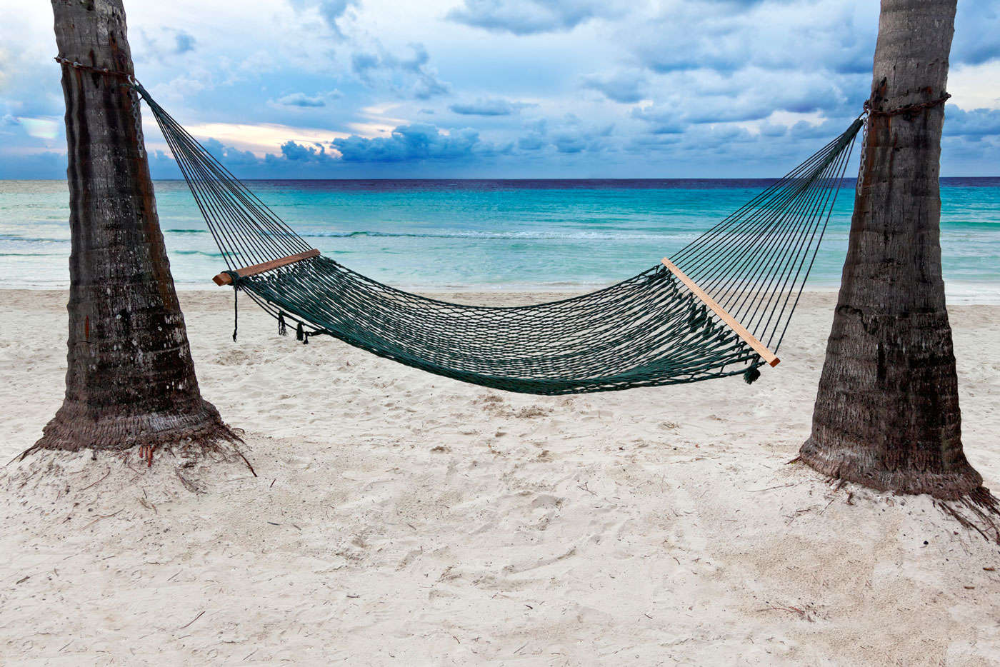 Plano ISD My Apps Beach hammock, Tropical beach