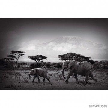 PR Interiors Foto op glas Art Kader 150 Wandpaneel Olifant en baby-olifant op de Savanne