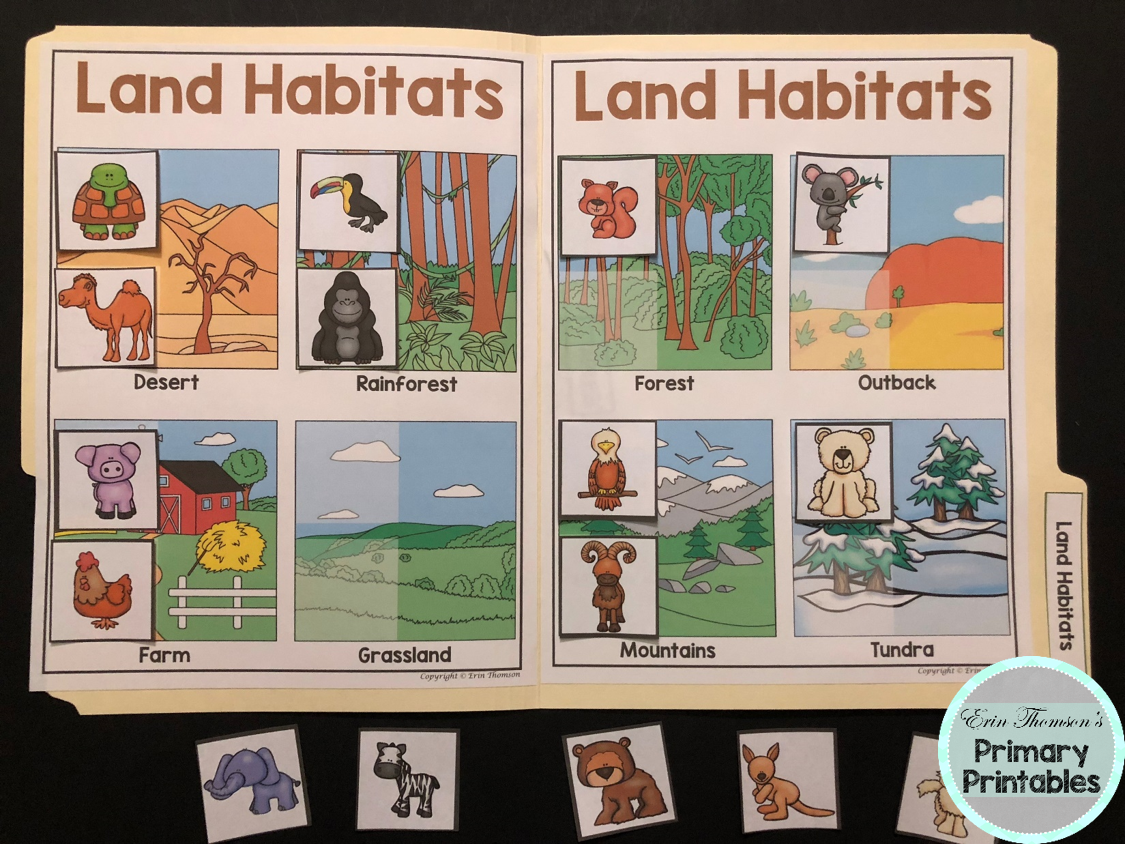 Science File Folder Activity Land Habitats