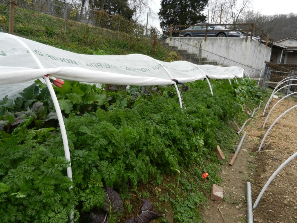 cold frame alternatives low tunnels for winter gardening cold