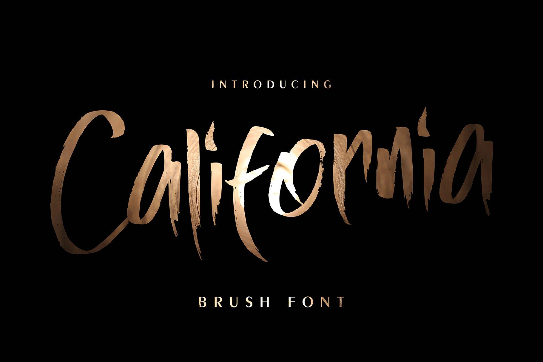California In 2020 Brush Font Handwritten Fonts Blog Header