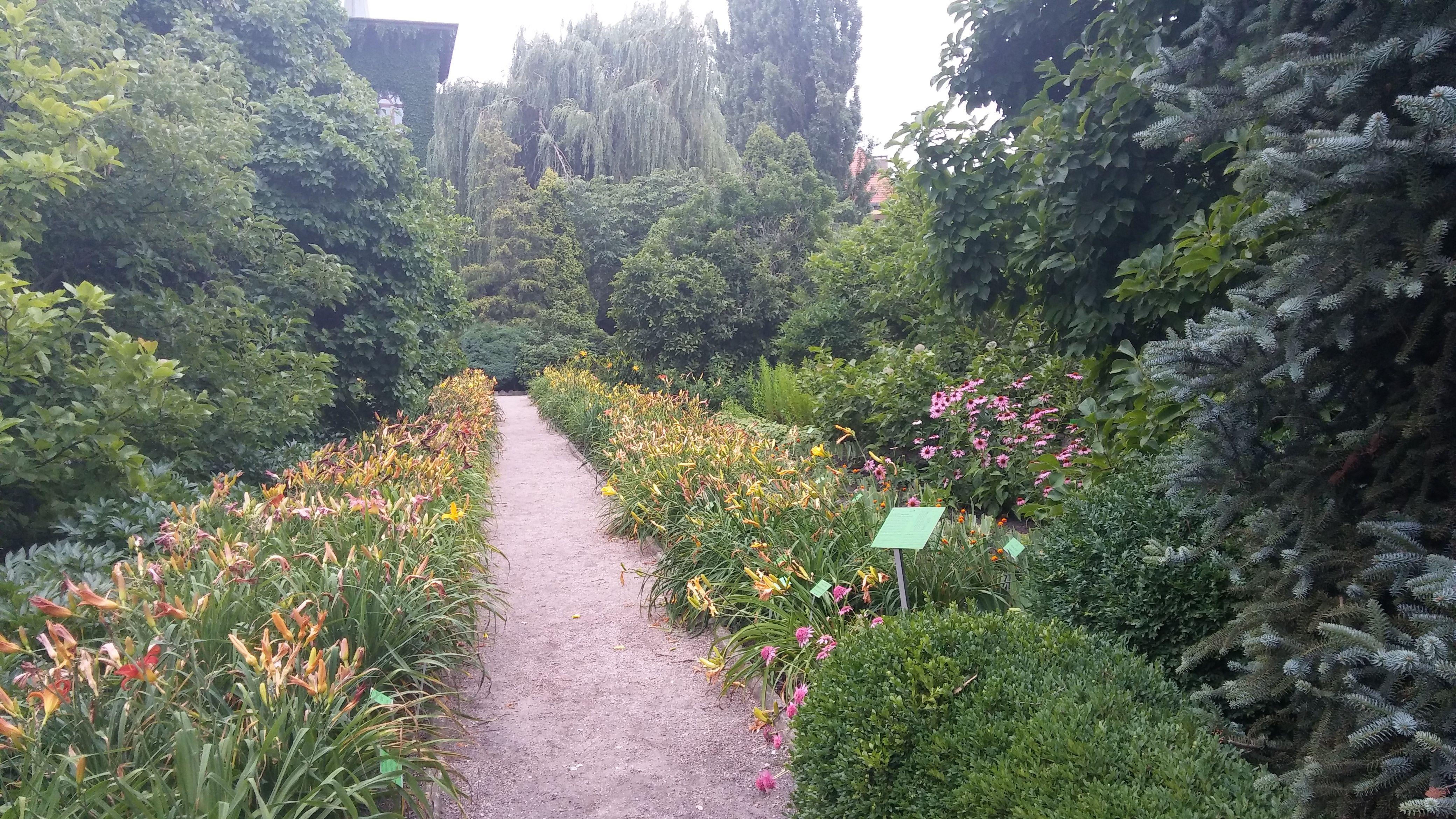 Gruntowe Rosliny Ozdobne Ornamental Plants Ogrod Botaniczny Uniwersytetu Wroclawskiego The Botanical Garden Of Botanical Gardens Landscape Travel Photos