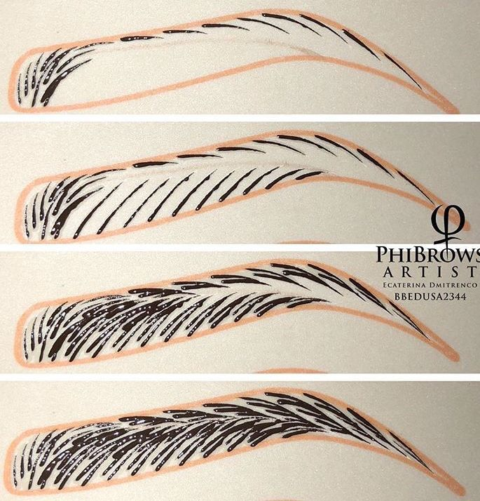 Microblading Pattern Design Practice Strokes Mircoblading Eyebrows Microblading Eyebrows Eyebrow Design