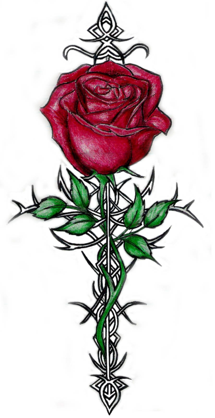 Tattoos Of Roses With Thorns Rose And Thorn Tattoos Cool Tattoos