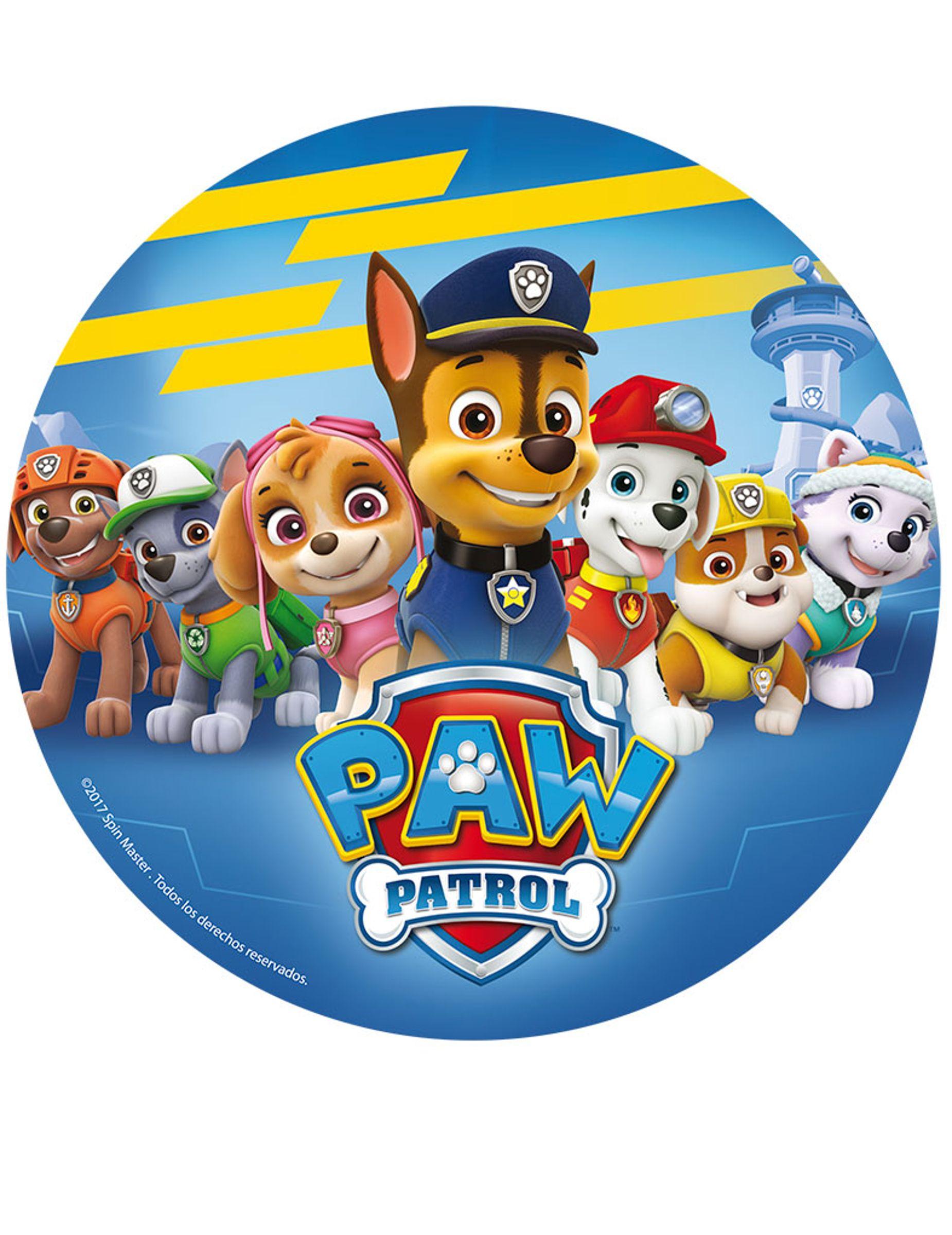 Paw PATROL Compleanno T-shirt con Skye Bambini//Bambino//Bambini//Bambino