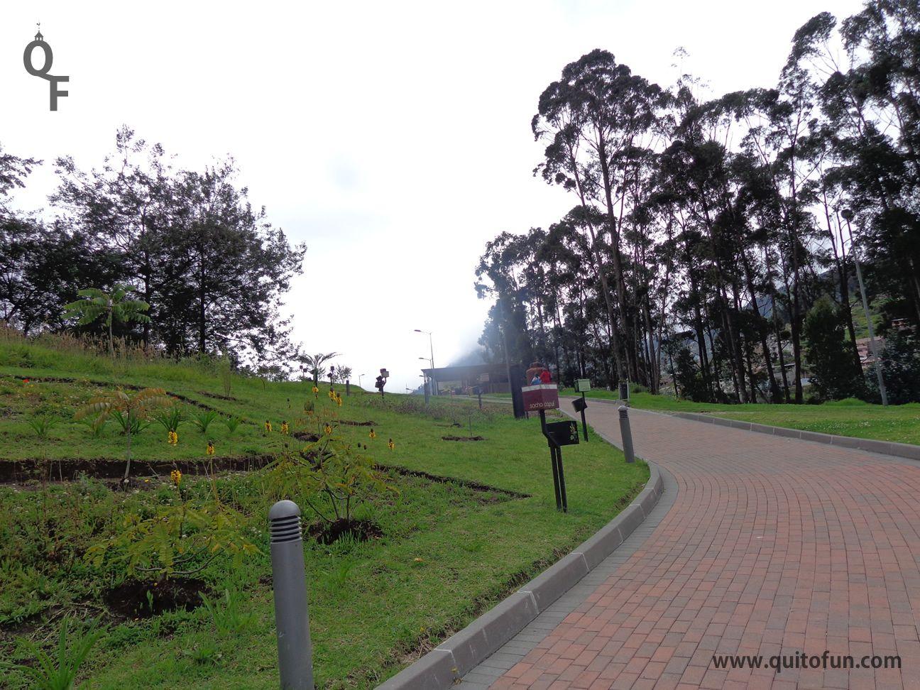 El MIC está rodeado de espacios verdes en los que se encuentran plantas nativas de Quito. Aquí puedes tomar un descanso o un refrigerio.