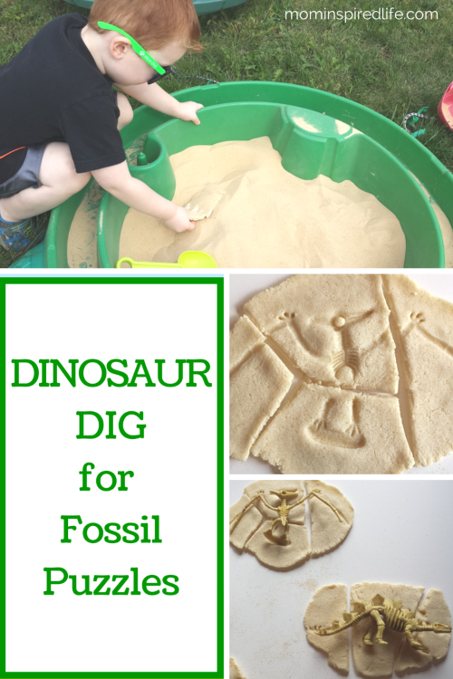 Amazon Best Sellers: Best Children's Dinosaur Books