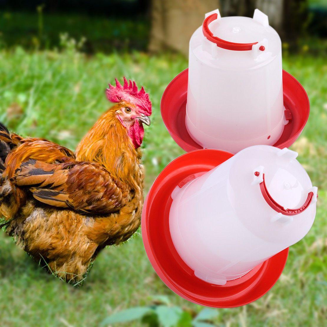 $2 99 - Plastic 1 5 L Chicken Quail Poultry Chick Hen