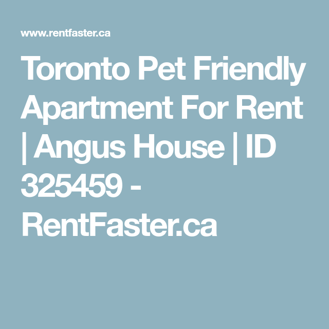 Toronto Pet Friendly Apartment For Rent